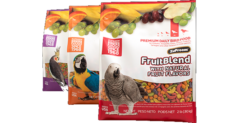 Explore Bird Food